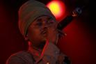 Oland Roots 2008 8561 Black Prophet