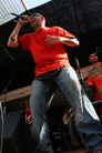 Oland Roots 20090717 Slag fran hjartat 834