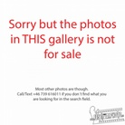 Aftershock-Festival-20171021 Gojira-Not-For-Sale