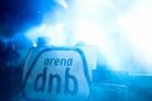 Arena Dnb Fest 2010 Festival Life Vlad Dec04 8933
