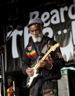 Bearded-Theory-20150524 Misty-In-Roots-Cz2j0571