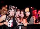 Bestival-2012-Festival-Life-Alan- 7518