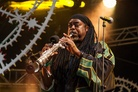 Bestival-20130905 Courtney-Pine 4791