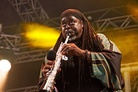 Bestival-20130905 Courtney-Pine 4860