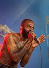 Big-Day-Out-Melbourne-20130126 Death-Grips--5866