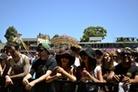 Big-Day-Out-Perth-2013-Festival-Life-Falcon 0133