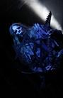 Brutal-Assault-20130810 Behemoth 2392