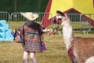 Camp-Bestival-2015-Festival-Life-Alan 014