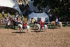 Camp-Bestival-2015-Festival-Life-Alan 056