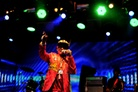Emmabodafestivalen-20150722 Lee-Scratch-Perry 4910