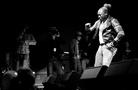 Furuvik-Reggaefestival-20130816 Elephant-Man-04551