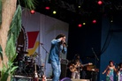 Furuvik-Reggaefestival-20130816 Julian-Marley 7848