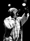 Furuvik-Reggaefestival-20130817 Capleton-05204