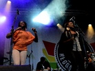 Furuvik-Reggaefestival-20130817 Groundation-6101