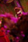 Malmofestivalen 2010 100822 Mohlavyr 9126