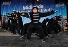 Midlands Music Festival 20090808 Diversity 6263