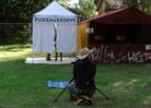 Provinssirock-2014-Festival-Life-Venla 1911
