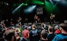 Punk-Rock-Holiday-20170810 Pears-Diz 8083