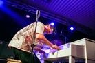 Rockabilly-I-Parken-20151121 The-Playtones-0054