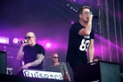Ruisrock-20140704 Cheek 0232