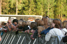 Tranas Musikfestival 2008 7965