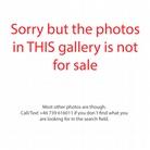 Vagos-Open-Air-20140810 The-Quartet-Of-Woah-Photos-Not-For-Sale