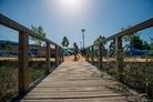 Vagos-Open-Air-2015-Festival-Life-Andre-Ah6 9439