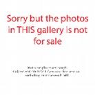 Vagos-Open-Air-20150809 Overkill-Photos-Not-For-Sale