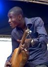 Womadelaide-20130308 Bassekou-Kouyate-And-Ngoni-Ba 9302