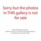 20130612 Korn-013-Tilburg-Photos-Not-For-Sale