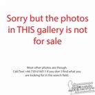 20170809 Lamb-Of-God-Bill-Graham-Civic-Auditorium-San-Francisco-Not-For-Sale