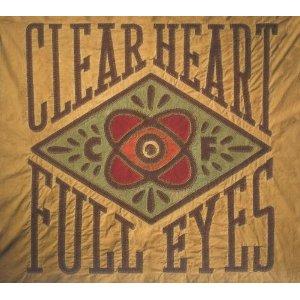 Review1493_craig_finn_-_clear_head_full_eyes
