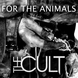 Review1611_the_cult_-_for_the_animals