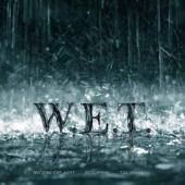 Review304_WET