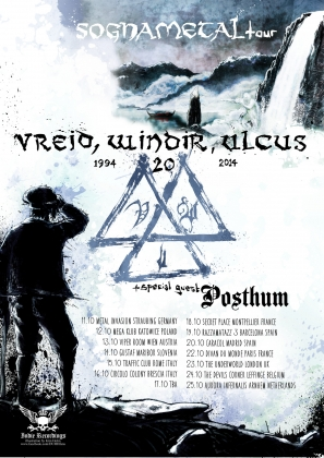 Review3743_POSTER_vreid_windir