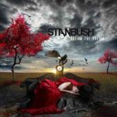 Review686_Stan_Bush_DtD