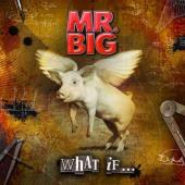 Review787_Mr_Big_What_If